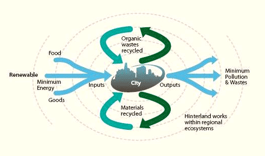 circular metabolism A theory of circular organization an negative feedback-defining life in a cybernetic context - download as pdf file (pdf), text file (txt) or read online.